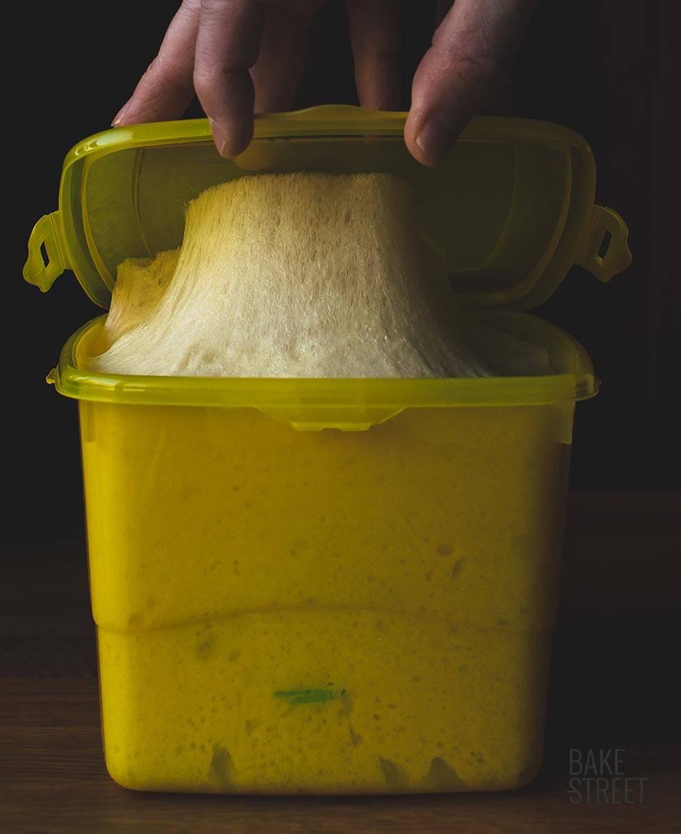 Pandoro con masa madre sólida